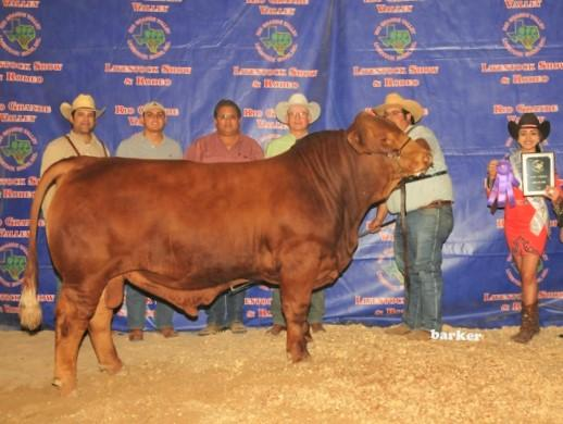 6G LMC Pappadeaux - one of several champions produced by 6G Ranch.