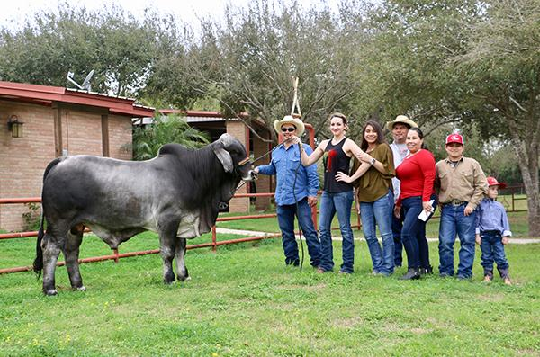 Partnership Herd Bull son owned with La Estancia Ranch